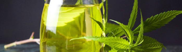 The Quality of CBD Oil Affects Your Results
